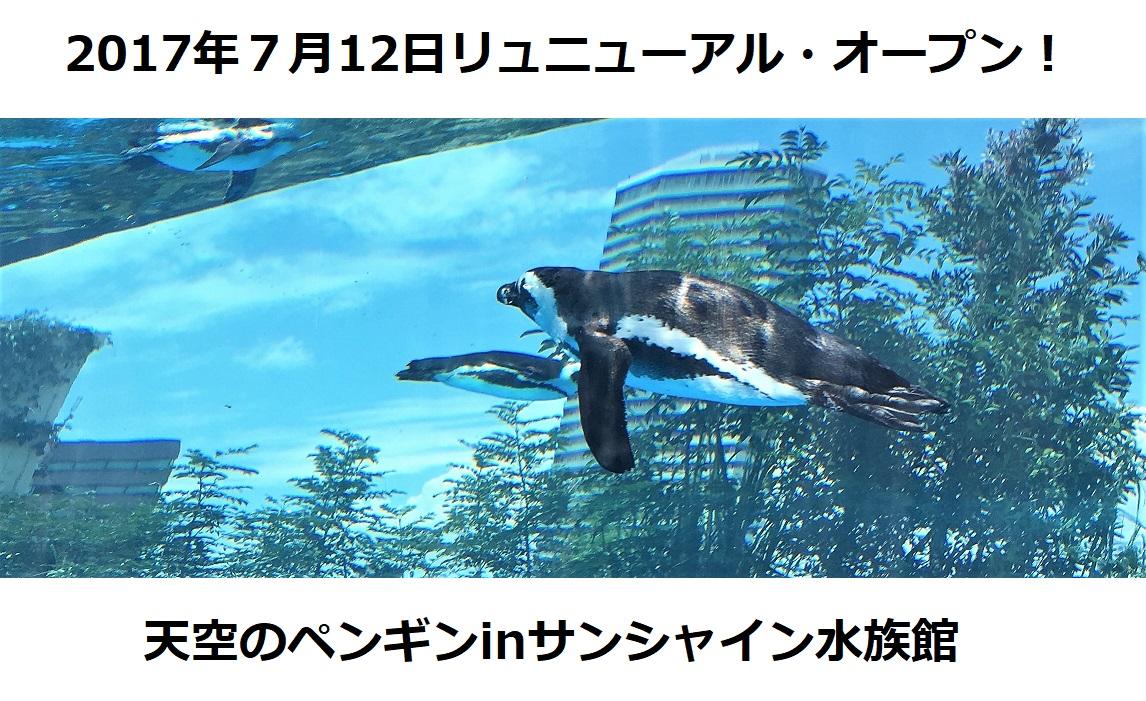【観光スポット】天空のペンギンinサンシャイン水族館